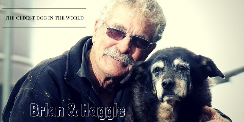 Brian & Maggie (1)